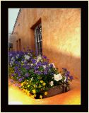Canyon Road Window Box and Flowers
