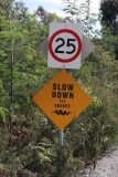 slow down for snakes