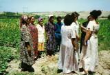 Business women group
