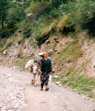 farmer women with donkey