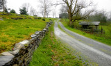 SPEEDWELL TENNESSEE STONE FENCE