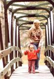 DODGE PARK BRIDGE