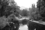 Half Dome from Stoneman Bridge BW