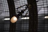 Orsay Lamp