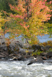 Autumn in Ottawa Valley