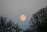 Måneopgang