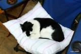Frederik taking a nap