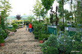 Ellengaard Planteskole