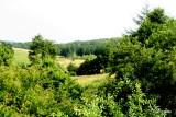 Glovdal nord for Gassum
