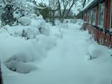 Sne 2007