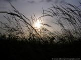 Sunrise at De Berk