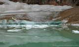 Cavell Glacier & Pond
