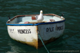 Dale Princess