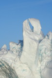 Natural Ice Sculpture: Two hugging Dolphins?