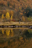 dubbele herfst