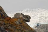 steen voor gletsjer