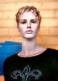 French Quarter Model