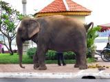Phnom Penh Revisited