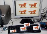 MiniTrojans  in my PC