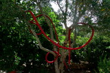 my sculpture with tubes and tree