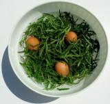 Salad  wild Arugula (American English), Rucola (Italian) and Eggs