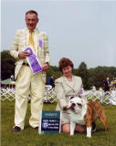 Litter #1 Santino Winners Dog 2 points,,,,1st time in the ring