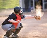 Little League and High School Baseball...