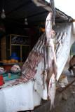 'Fresh' fish