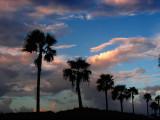 South Padre Island.jpg