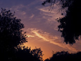 Z210-28-08 Cirrus Sunset 2.jpg