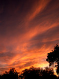 12-3-08Z6 Sunset 2.jpg