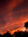12-3-08Z6 Sunset 4.jpg
