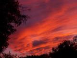 12-3-08Z6 Sunset 5.jpg
