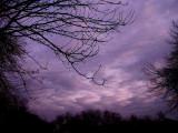 1-15-09Z6Winter Sunset 2.jpg