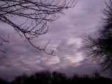 1-15-09Z6Winter Sunset 4.jpg