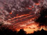 2-13-09Z6Lucky Sunset 2.jpg