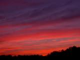 4-4-09Z6 Sunset 7.jpg