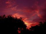 5-21-09 Sunset.jpg