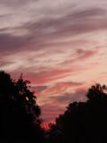 10-17-2010 Cirrus Sunrise 1.jpg