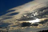 11-9-2010 Iridescent Clouds.jpg