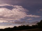 11-9-2010 Reclining Oryx Cloud.jpg