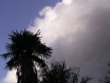 1-20-2011 Cold Front 6.jpg