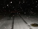 2-4-2011 Snow 1.jpg