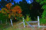 11-8-2005  Old Fence.JPG