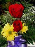 8-2005 Stacys Flowers.JPG