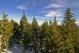 Grouse Mountain.jpg