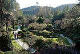 Butchart Gardens Too Cold for Flowers.jpg