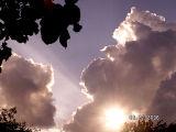 Sun Rays2.jpg