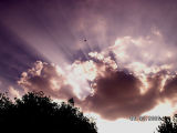 Sun Rays3.jpg