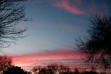 2-2-2008 Morning Color 1.jpg